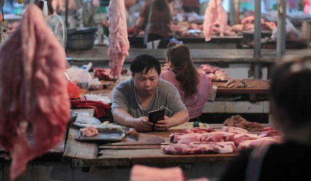 mercato carne suina